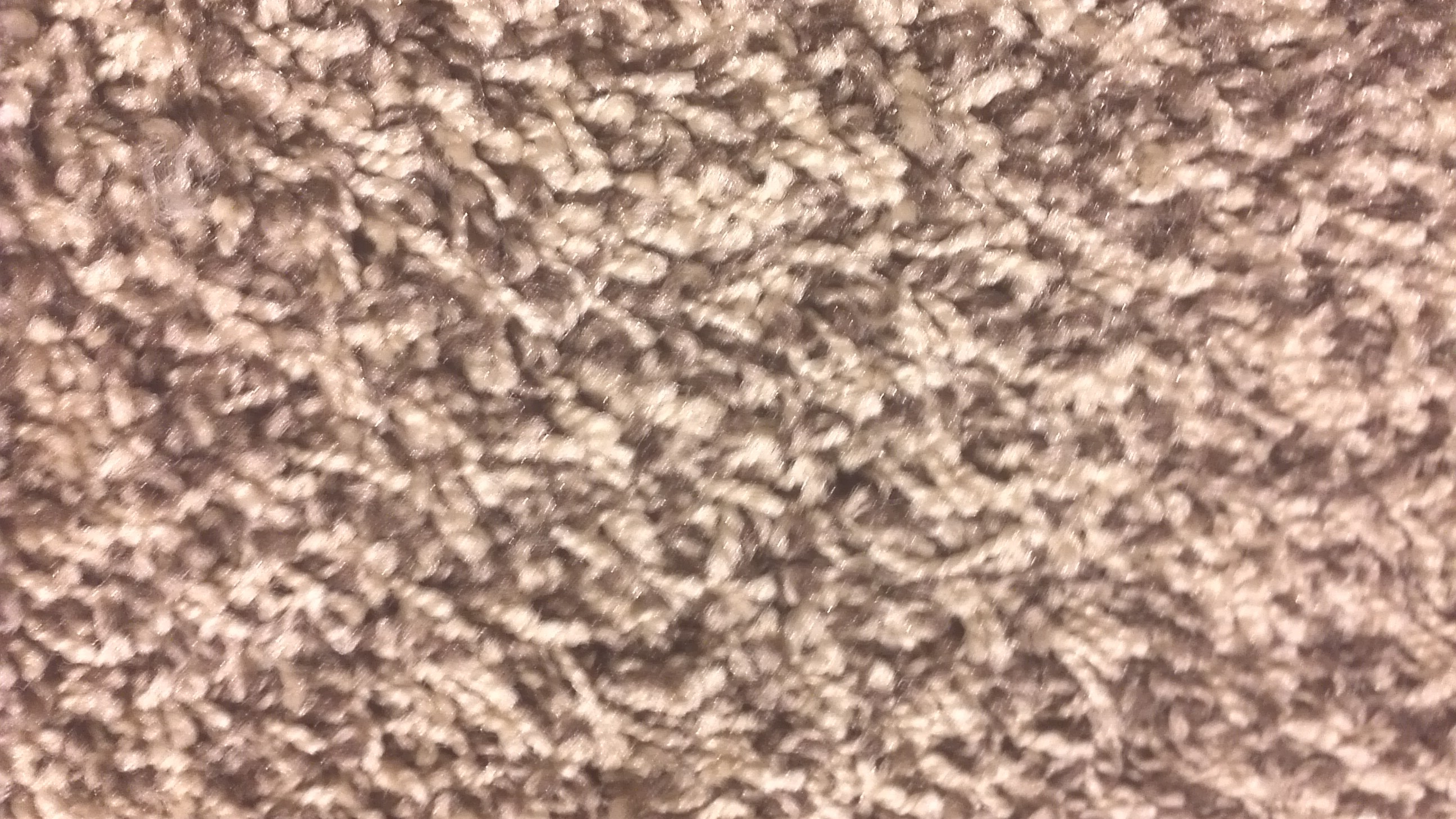 Carpet Cleaning North Vancouver Shenasi Area Rug