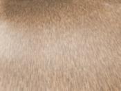haro-tritty-100-plank-1-strip-bamboo-stripes-laminate