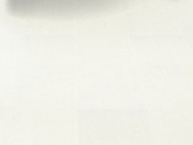 haro-tritty-100-plank-1-strip-minimal-white-laminate