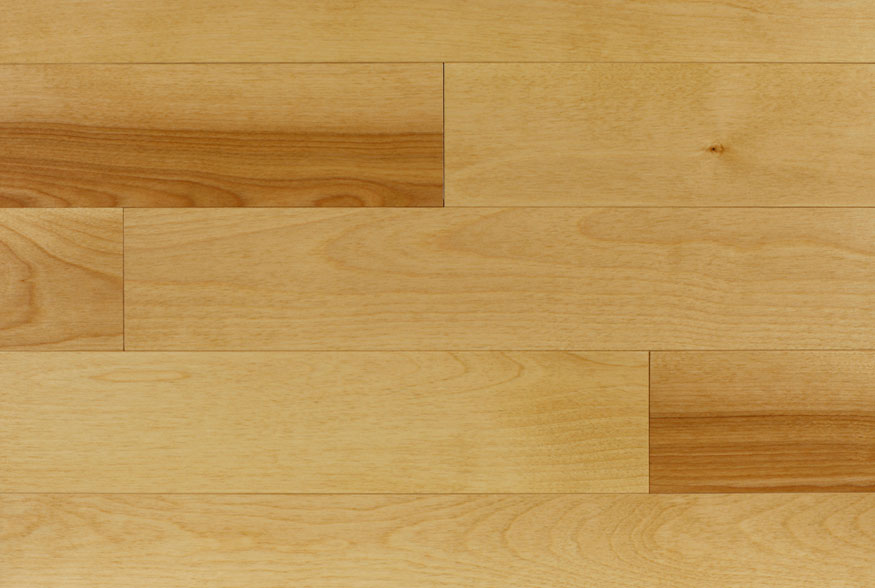 Model Birch Hardwood Flooring Burnaby Vancouver 604 558 1878
