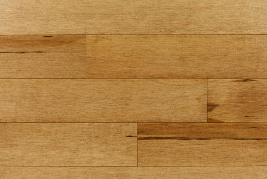 Model Birch Hardwood Flooring Burnaby Vancouver 604 558 1878