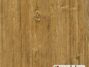 aspen-pine-28425