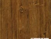 aspen-pine-28476