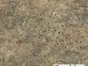 latin-limestone-46945