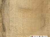old-english-oak-24263
