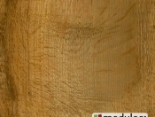 old-english-oak-24842