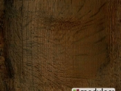 old-english-oak-24892
