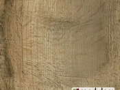 old-english-oak-24930